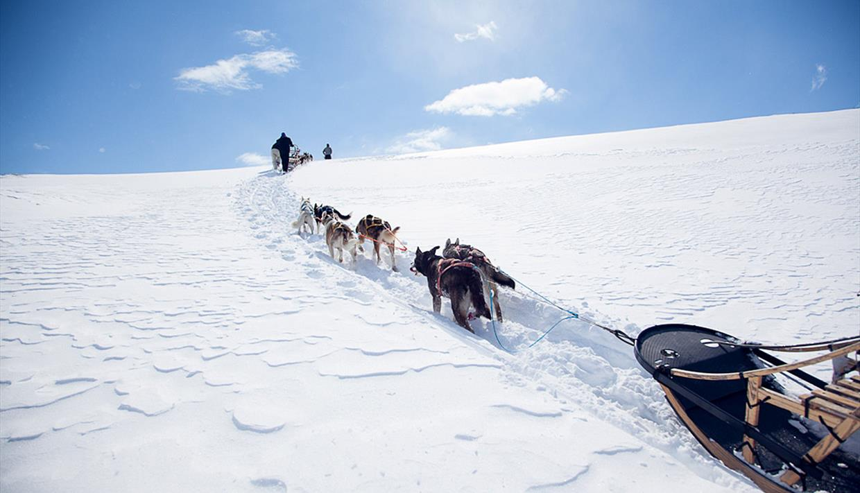 Beito Husky Tours - Langsua Husky Traverse - 4 days expedition